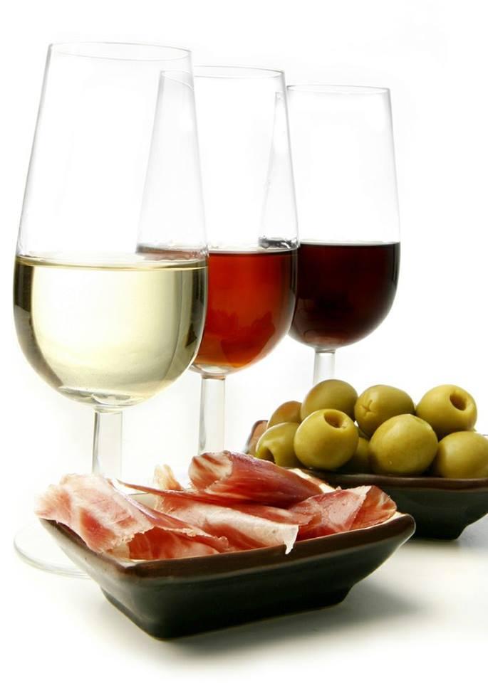 Bodegas Navarro Cata de Vino